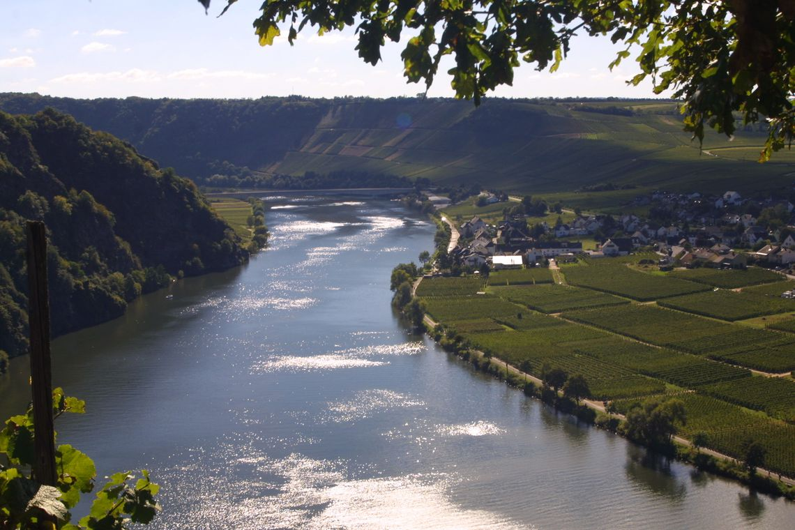 Die Mosel-Loreley
