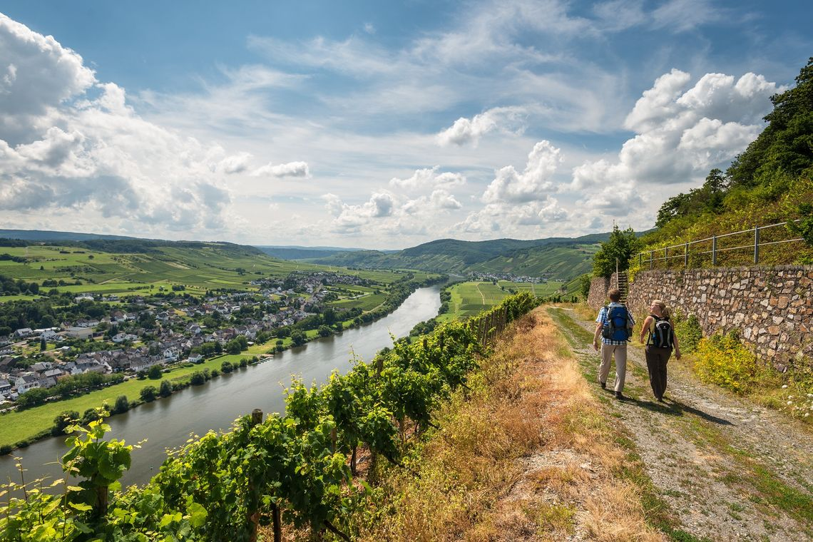 Hiking vacation in the Moselle valley