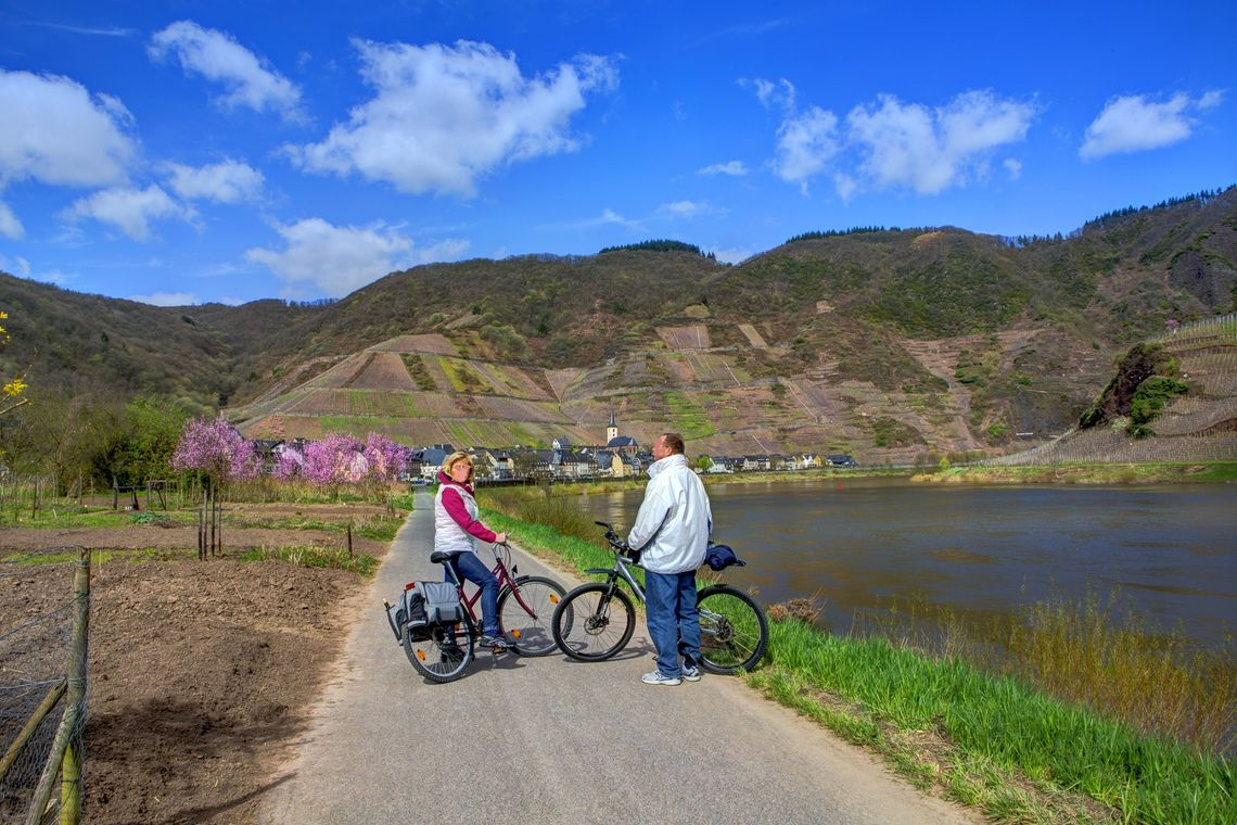 Cyclists on the Moselle cycle path